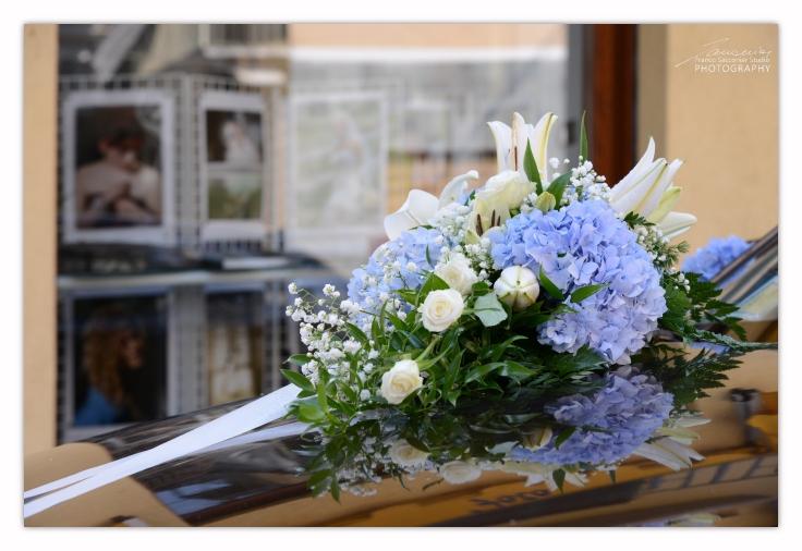 FS8_5115 fiori negozio